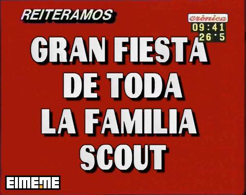 fiesta scout